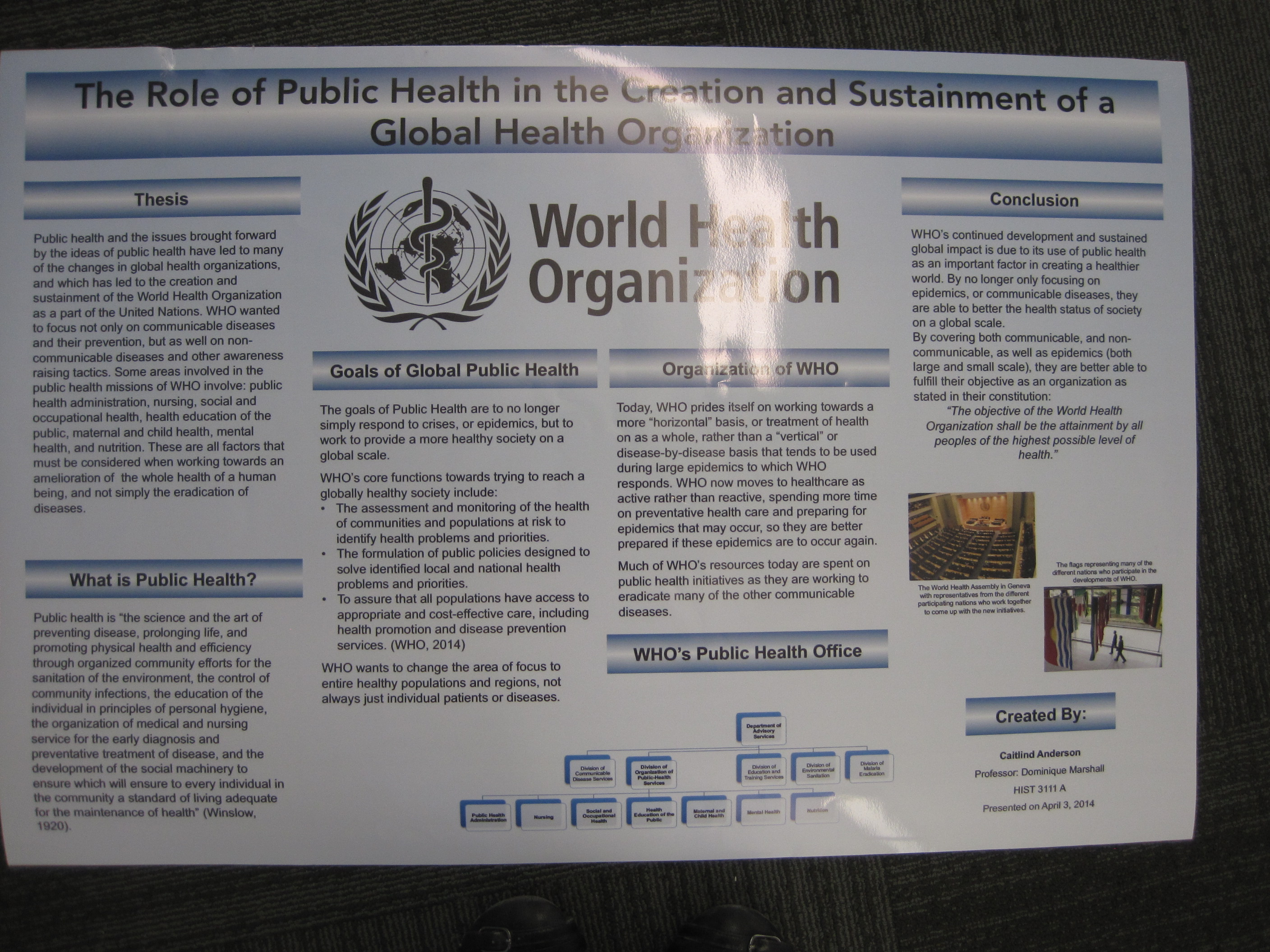 Public Health and the World Health Organization